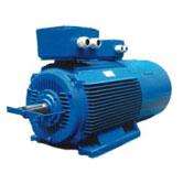 Frander Elektrim Slip Ring Motor
